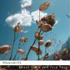 Moondrift folk music ladylovely label